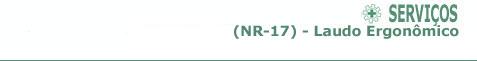 NR17 - Laudo Ergonômico